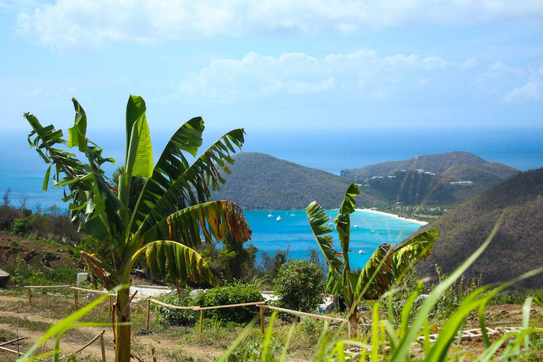 farm overlooking island
